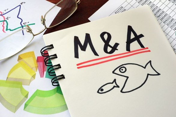Crazy M&A Myths You Need to Stop Believing Now