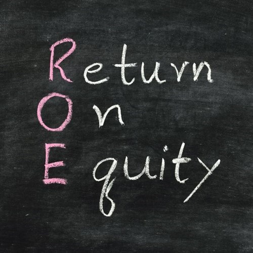 Understanding Return on Equity for Privately Owned Businesses