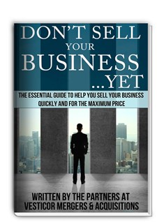 Dont Sell Your Business Yet Ebook