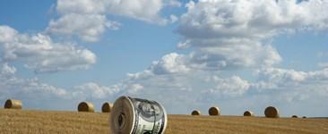 dollar crop valuation intangible capital
