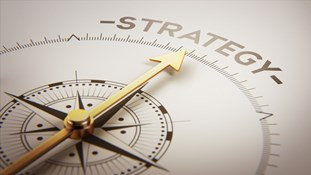 strategic planning, strategy, valuation, software